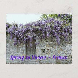 POSTCARD - Spring in Viviers France zazzle_postcard