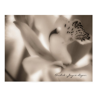 Postcard Template - Sepia Orchid (Photography)