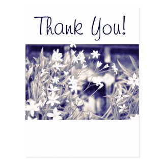Postcard template, thank you, star Flowers
