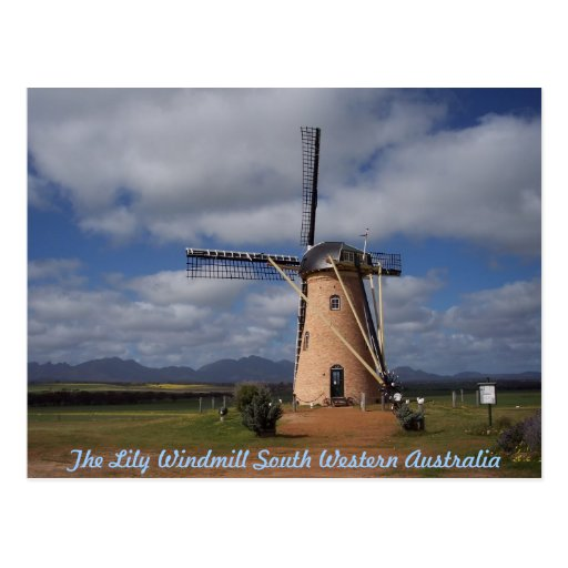 POSTCARD The Lily Windmill South Western Australia