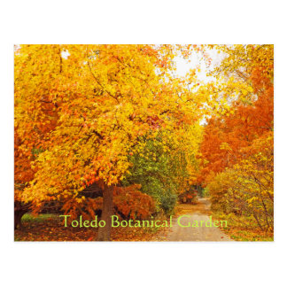 POSTCARD/TOLEDO BOTANICAL GARDEN/AUTUMN PATH POSTCARD