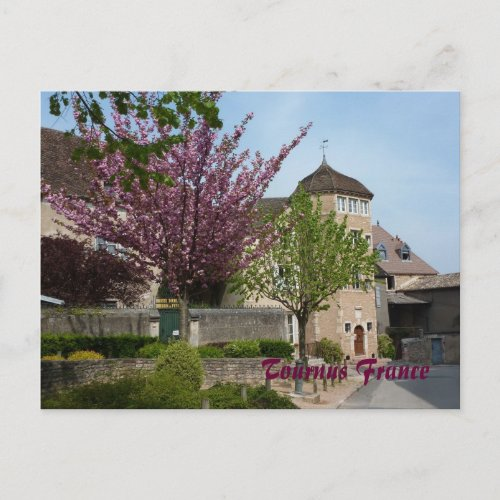 Postcard Tournus France postcard