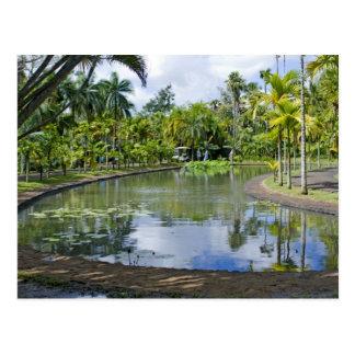 postcard tropical garden