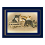 Postcard Vintage Cats And Cart Post Cards