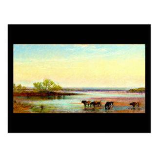 Postcard-Vintage Dallas Artwork-Frank Reaugh 1 Postcard