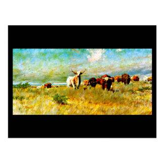 Postcard-Vintage Dallas Artwork-Frank Reaugh 4 Postcard
