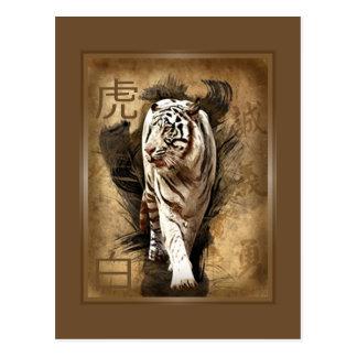 Postcard white tiger