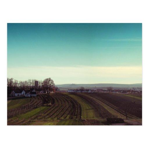 """Postcard """"Wintercold"""""""