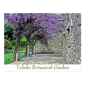 """POSTCARD, """"WISTERIA AND STONE WALL IN GARDEN"""" POSTCARD"""