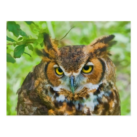 Postcard with Great Horned Owl
