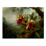Postcard With Martin Johnson Heade Painting