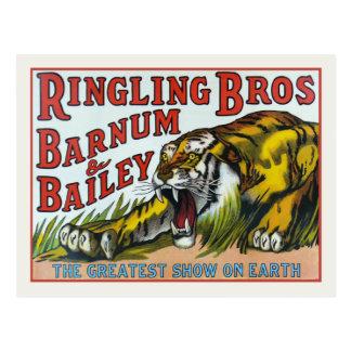 Postcard with Vintage Circus Tiger Print