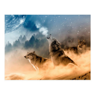 Postcard/Wolves Postcard