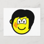 Bruce Lee buddy icon   postcards