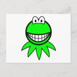 Kermit the Frog smile   postcards