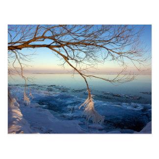 Postcards,Lake Ontario, Ice Cold. Postcard