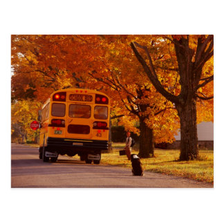 POSTCARDS   SCHOOL BUS