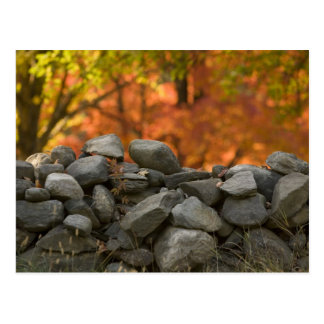 POSTCARDS   STONE WALL