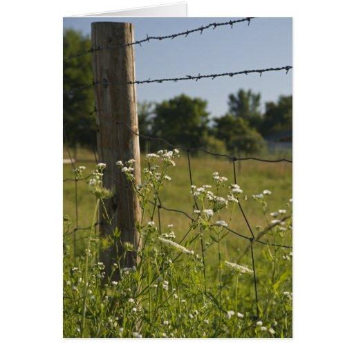 Poste de la cerca del país y tarjeta de felicitaci