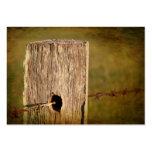 Poste y alambre de púas de la cerca tarjetas de visita
