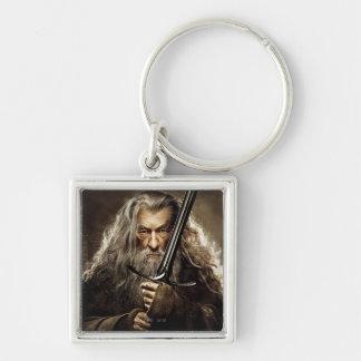 Poster 1 del carácter de Gandalf Llavero