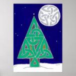 Poster 2010 del solsticio de invierno