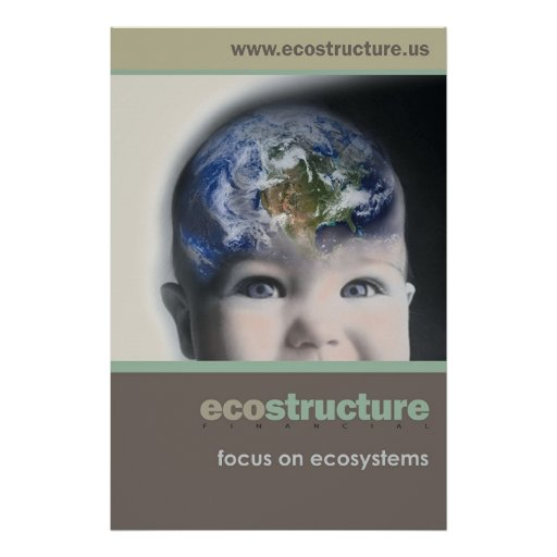 Poster 24x36 de Ecostructure