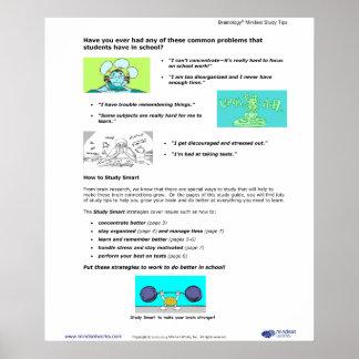 Poster 2 de Brainology®: Estudiante común Chalenge