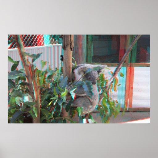 Poster 2 del anáglifo de la koala 3D