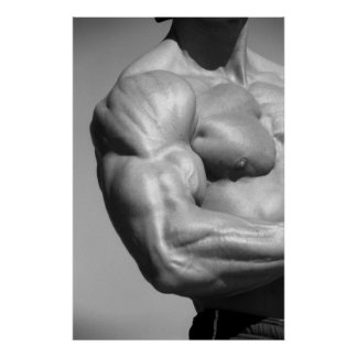 Poster #2 del bíceps