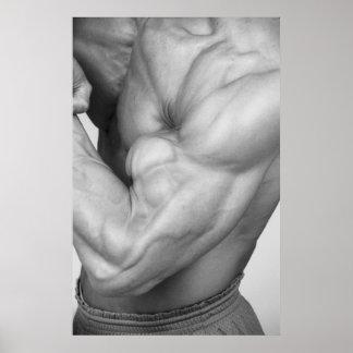 Poster #3 de la pared del gimnasio del bíceps