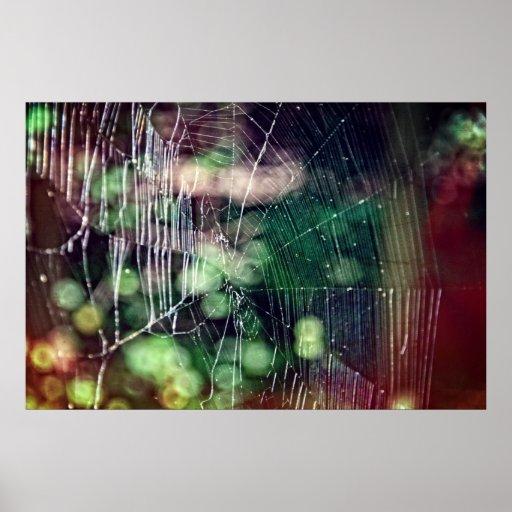 Poster #5476 de Spiderweb