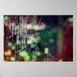 Poster #5476 de Spiderweb Póster