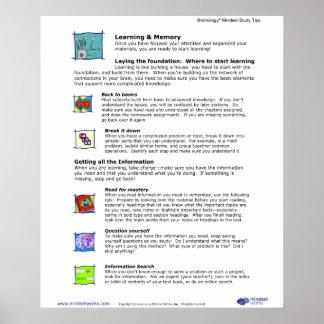 Poster 5 de Brainology®: Aprendizaje y memoria