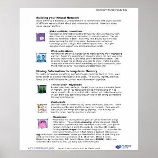 Poster 6 de Brainology®: Construcción de su red ne