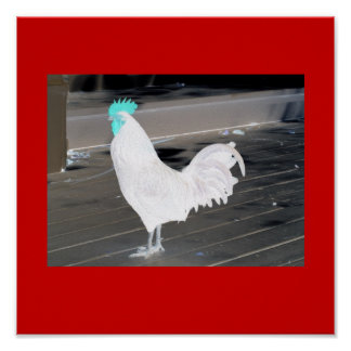 Poster- abstract white rooster, blue comb on Red Poster
