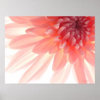 Poster abstracto de los pétalos rosados de la flor