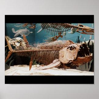 Poster acuático de Dino Póster