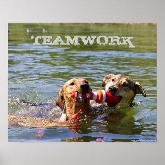 Poster adaptable del trabajo en equipo del perro