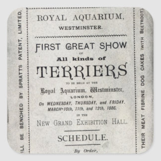Poster advertising the Allied Terrier Club Square Sticker