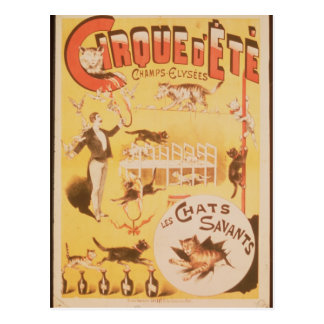 Poster advertising the Cirque d'Ete in the Postcard