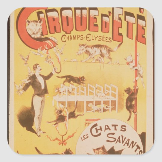 Poster advertising the Cirque d'Ete in the Square Sticker