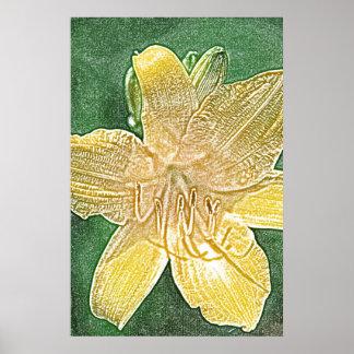 Poster amarillo de la flor del daylily de Stella d