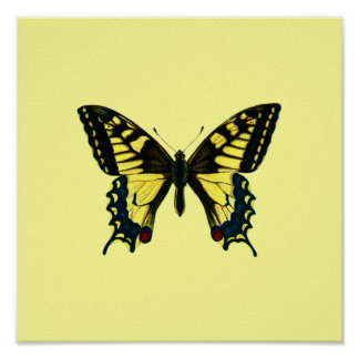 Poster amarillo de la mariposa