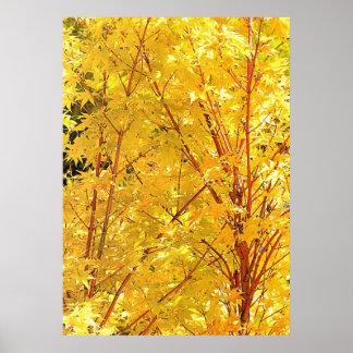 Poster amarillo de las hojas de arce