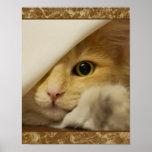 Poster amarillo lindo del gatito