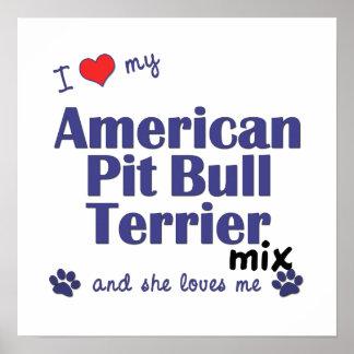 Poster americano de la mezcla de Terrier de pitbul