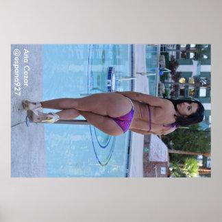 Poster Ana Cozar AT the pool