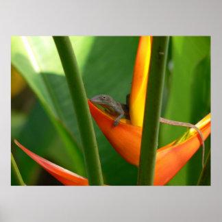 Poster anaranjado del verde de la flor del lagarto