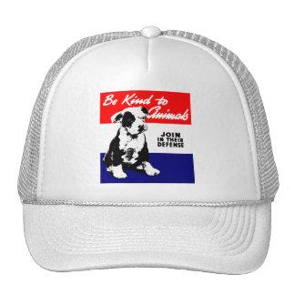 Poster animal de la amabilidad del vintage gorras